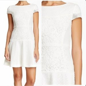 Betsey Johnson White Floral Lace Mesh Dress 6